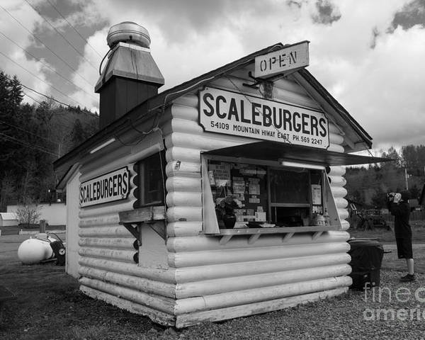Scaleburgers Poster featuring the photograph Scaleburgers by Tikvah's Hope