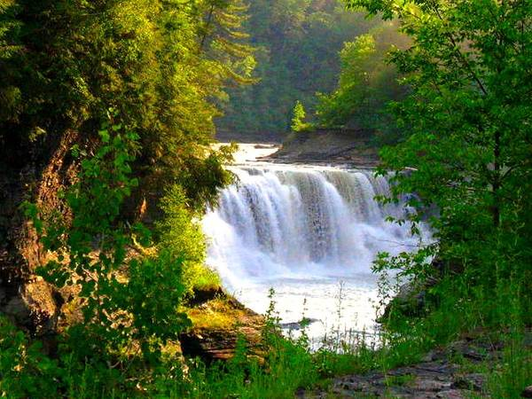 Falls Poster featuring the photograph Scenic Falls by Rhonda Barrett