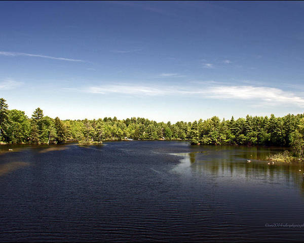 Lake Landscape Photography Poster featuring the photograph Scenic Maine Lake by Catherine Melvin