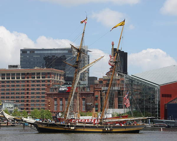 Harbor Poster featuring the photograph Schooner Arriving At Baltimore Inner Harbor by Christiane Schulze Art And Photography
