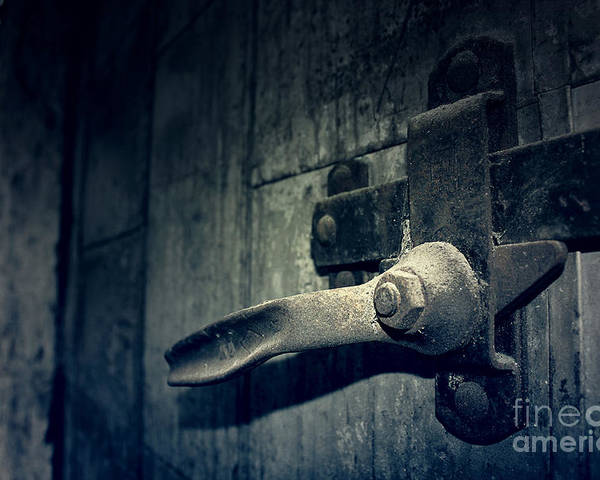 Door Poster featuring the photograph Secrets Within by Trish Mistric