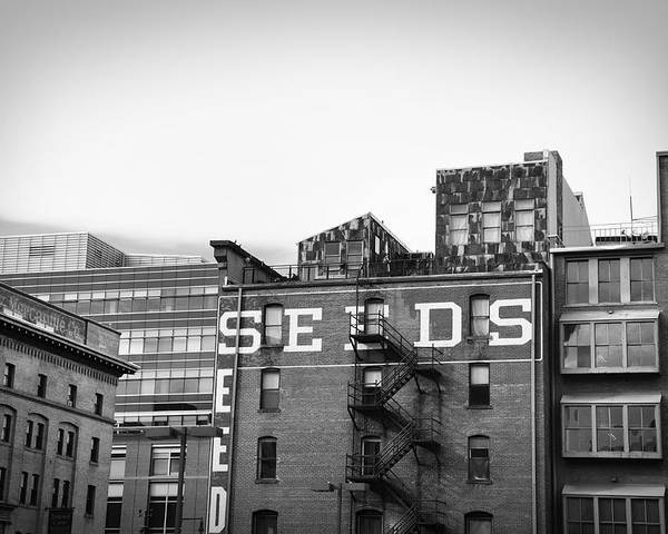 Black And White Poster featuring the photograph Seeds Building Two by Todd Hartzo