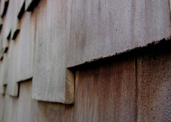 Wood Poster featuring the photograph Siding by Sarah Houser