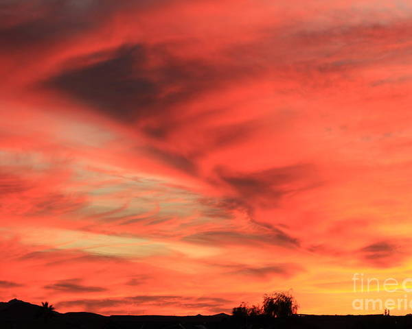 Sunset Poster featuring the photograph Sky On Fire by Carol Komassa