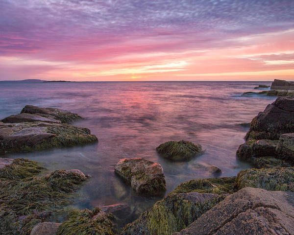 Horizontal Poster featuring the photograph Sky Purple by Jon Glaser