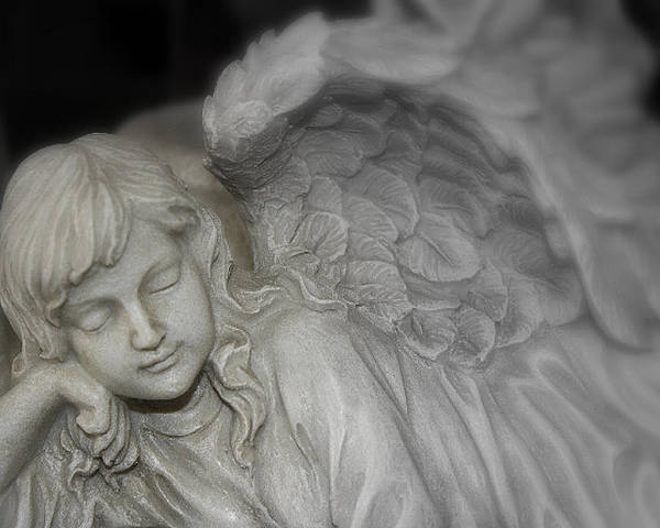 Angel Poster featuring the photograph Sleeping Angel by Fran James