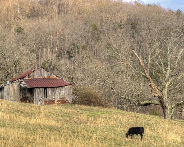 Barn Poster featuring the photograph Smoky Mountain Barn 10 by Douglas Barnett
