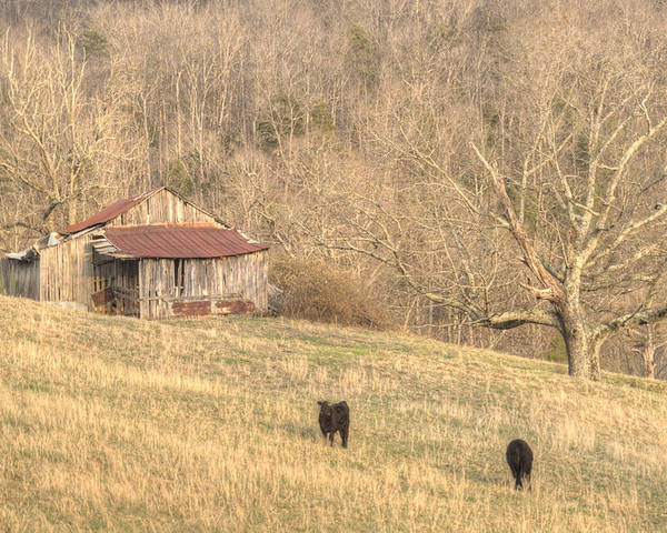 Barn Poster featuring the photograph Smoky Mountain Barn 8 by Douglas Barnett