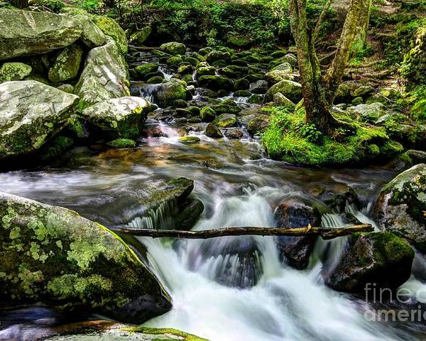 Smoky Mountains Poster featuring the photograph Smoky Mountain Stream 4 by Mel Steinhauer