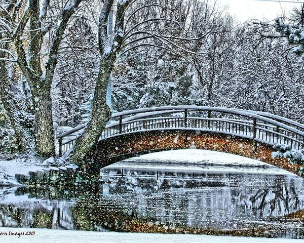 Snow Poster featuring the photograph Snow Bridge by Rebecca Adams