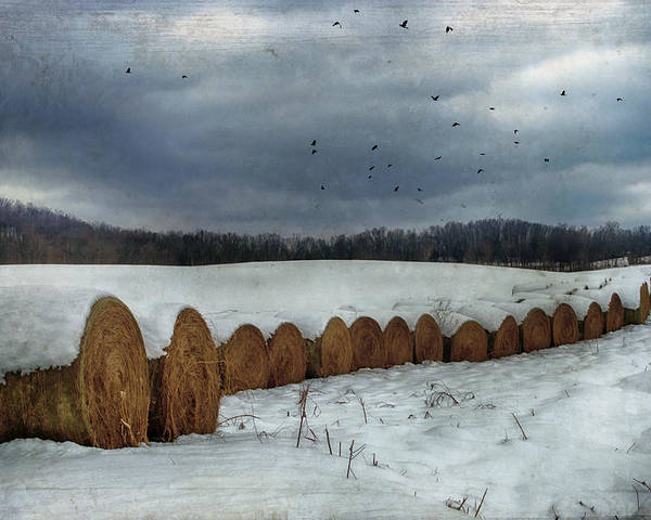 Hay Poster featuring the photograph Snow Covered Hay Bales by Kathy Jennings