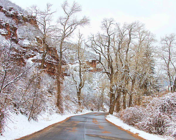 Snow Poster featuring the photograph Snow Dusted Colorado Scenic Drive by James BO Insogna