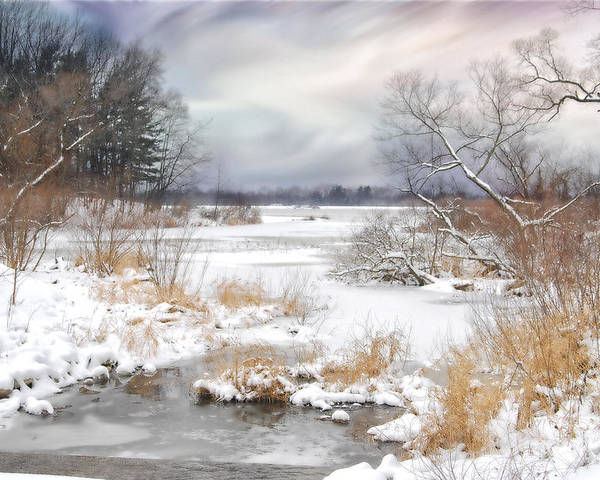 Winter. Snow. Lake Poster featuring the photograph Snow Lake by Mary Timman