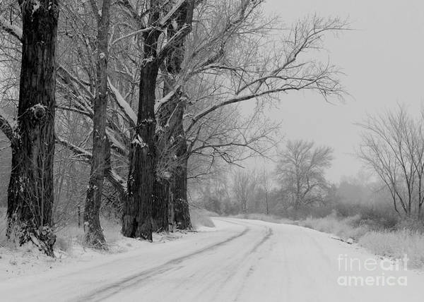 Snowy Country Road Poster featuring the photograph Snowy Country Road - Black And White by Carol Groenen