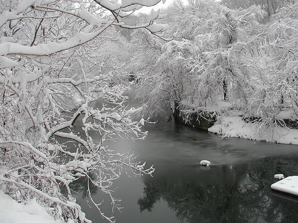 Snowy Wissahickon Creek Poster featuring the photograph Snowy Wissahickon Creek by Bill Cannon