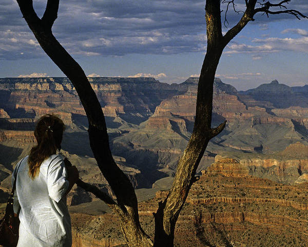 Grand Canyon National Park Poster featuring the photograph South Rim Grand Canyon Sunset Light On Rock Formations With Woma by Jim Corwin