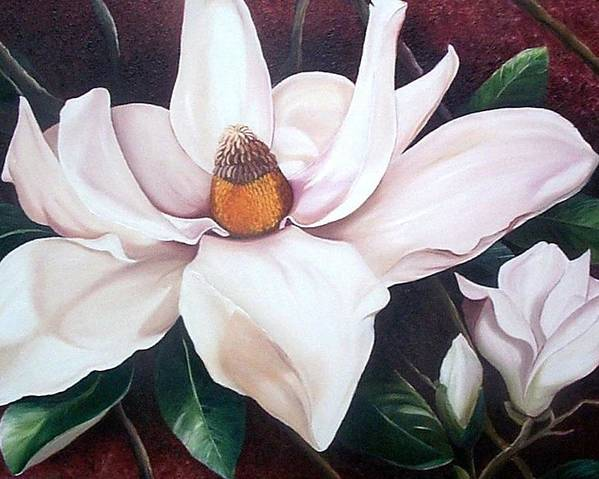 Magnolia Southern Bloom Floral Botanical White Poster featuring the painting Southern Beauty by Karin Dawn Kelshall- Best
