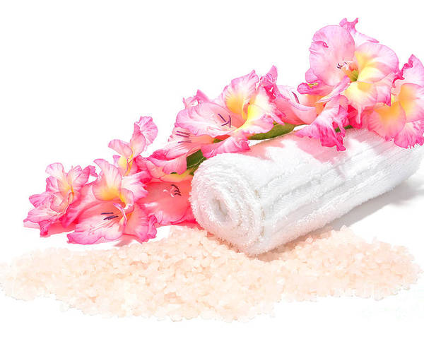 Aromatherapy Poster featuring the photograph Spa Gladiolus by Olivier Le Queinec