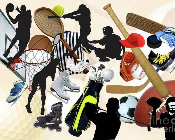 Susan Lipschutz Poster featuring the photograph Sports Sports Sports by Susan Lipschutz
