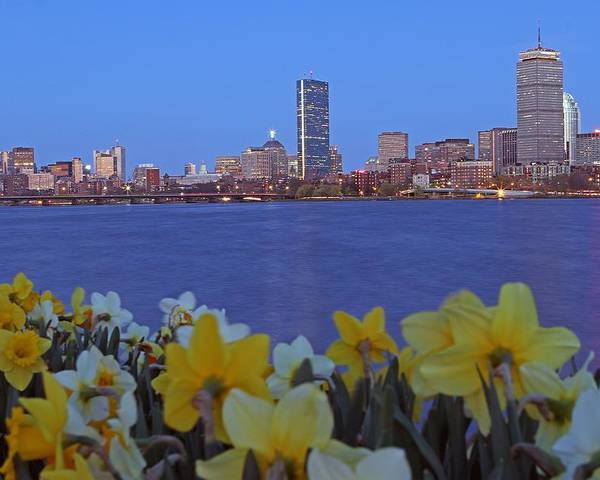 Spring Poster featuring the photograph Spring Into Boston by Juergen Roth