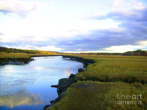 Marsh Poster featuring the photograph Spring Marsh by Crystal Morin