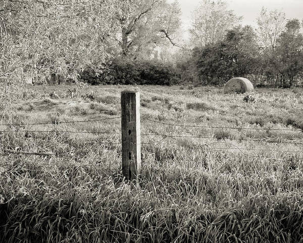 Spring Poster featuring the photograph Spring Post And Bale In Black N White by Tracy Salava