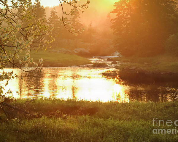 Spring Poster featuring the photograph Spring Sunset by Alana Ranney