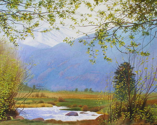 Watercolor Poster featuring the painting Springtime Moraine Park by Daniel Dayley