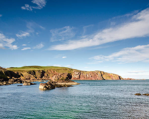 Bay Poster featuring the photograph St Abbs Cliffs by David Head