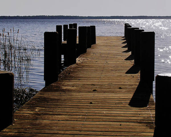 St Poster featuring the photograph St Johns River Florida - A Chain Of Lakes by Christine Till