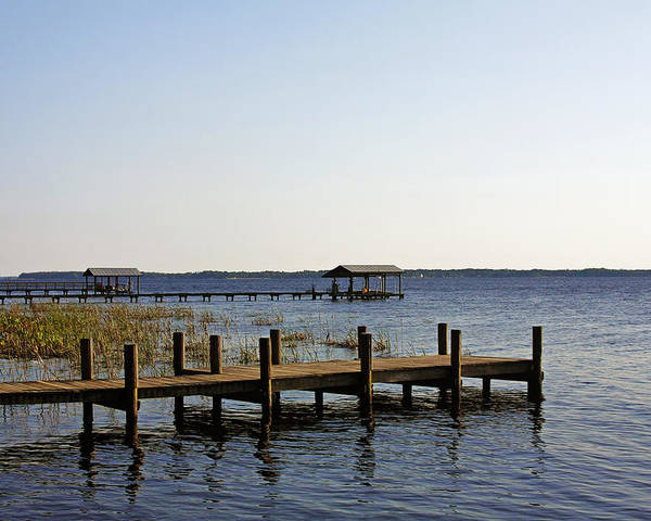 St Poster featuring the photograph St Johns River Florida - Walk This Way by Christine Till
