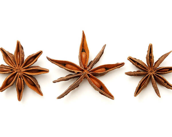 White Background Poster featuring the photograph Star Anise Fruits by Fabrizio Troiani