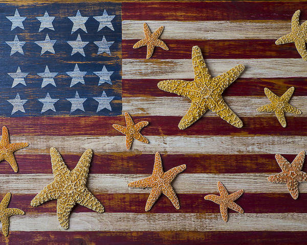 American Poster featuring the photograph Starfish On American Flag by Garry Gay