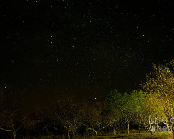 Night Poster featuring the photograph Starry Night by Kobus Van der Merwe