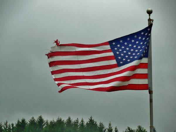 Stars And Stripes Poster featuring the photograph Stars And Stripes by Anthony Thomas