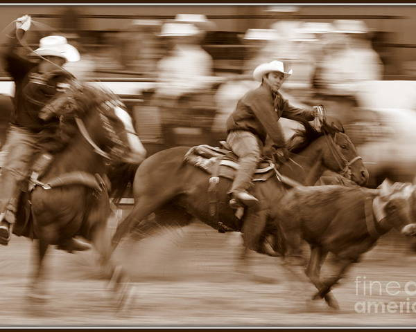 Horses Poster featuring the photograph Steer Roping by Bill Keiran