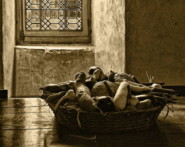 Vegetables Poster featuring the photograph Still Life At Chenonceau by Nikolyn McDonald