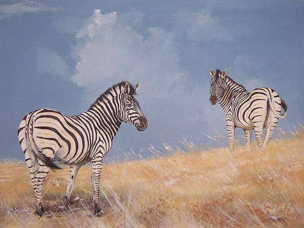 Zebra Poster featuring the painting Stormy Zebra by Robert Teeling