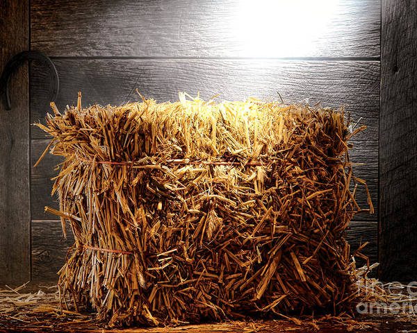 Bale Poster featuring the photograph Straw Bale In Old Barn by Olivier Le Queinec