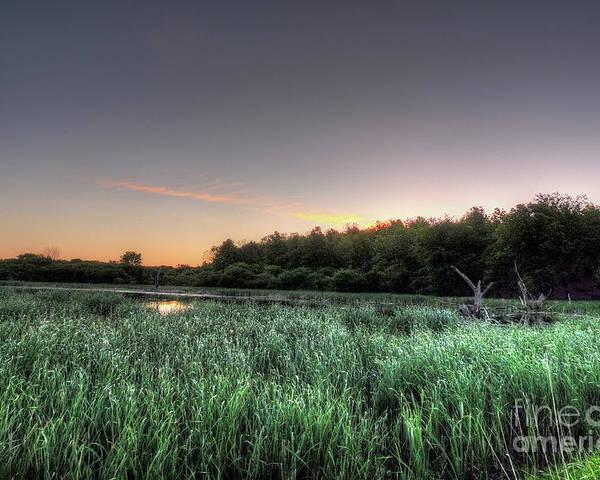 Sunrise Poster featuring the photograph Streaky Swamp Sunrise by Deborah Smolinske