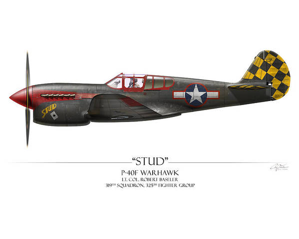 Aviation Poster featuring the painting Stud P-40 Warhawk - White Background by Craig Tinder