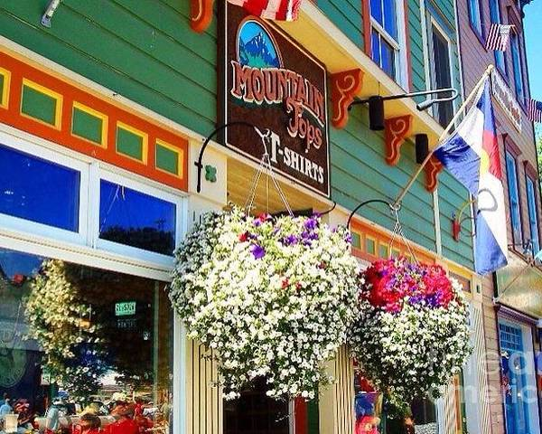 4th Of July Poster featuring the photograph Summer In Crested Butte by Trisha Buchanan