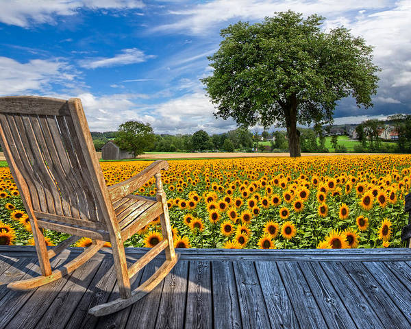 Austria Poster featuring the photograph Sunflower Farm by Debra and Dave Vanderlaan