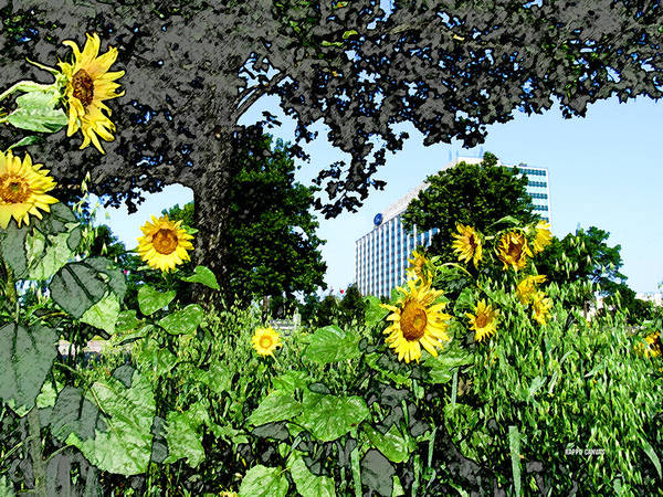 Sunflowers Poster featuring the mixed media Sunflowers Outside Ford Motor Company Headquarters In Dearborn Michigan by Design Turnpike