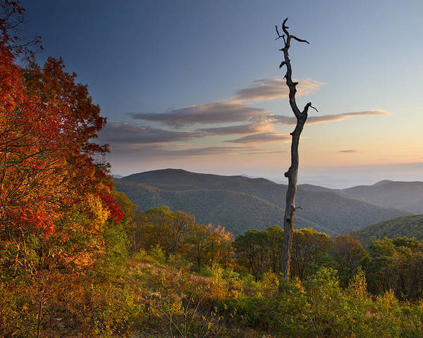 Shenandoah Poster featuring the photograph Sunrise In Shenandoah National Park by Pierre Leclerc Photography