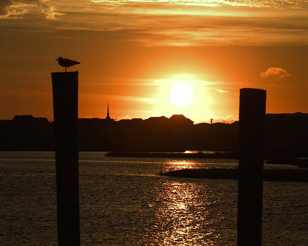 Sunrise Poster featuring the photograph Sunrise Over Topsail Island by Mike McGlothlen