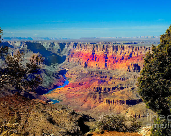 Grand Canyon Poster featuring the photograph Sunset At South Rim by Robert Bales