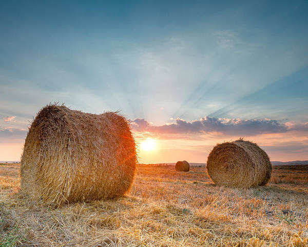 Bales Poster featuring the photograph Sunset Bales by Evgeni Dinev