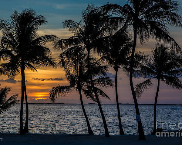 Sunset Poster featuring the photograph Sunset Breeze by Rene Triay Photography