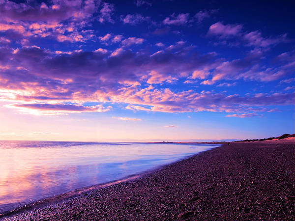 Sunset Poster featuring the painting Sunset In Cape Cod Boston Massachusetts by Paul Ge